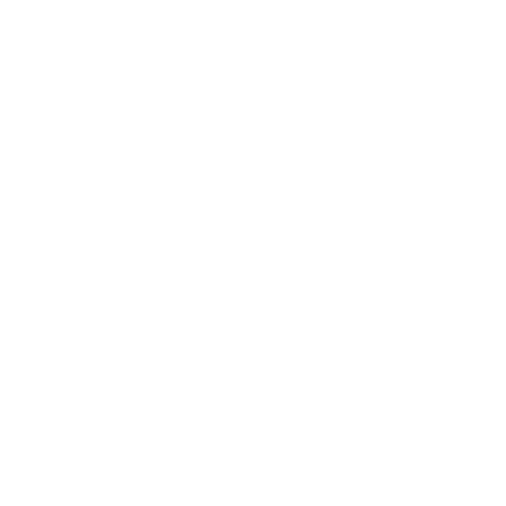 Shoes White Icon