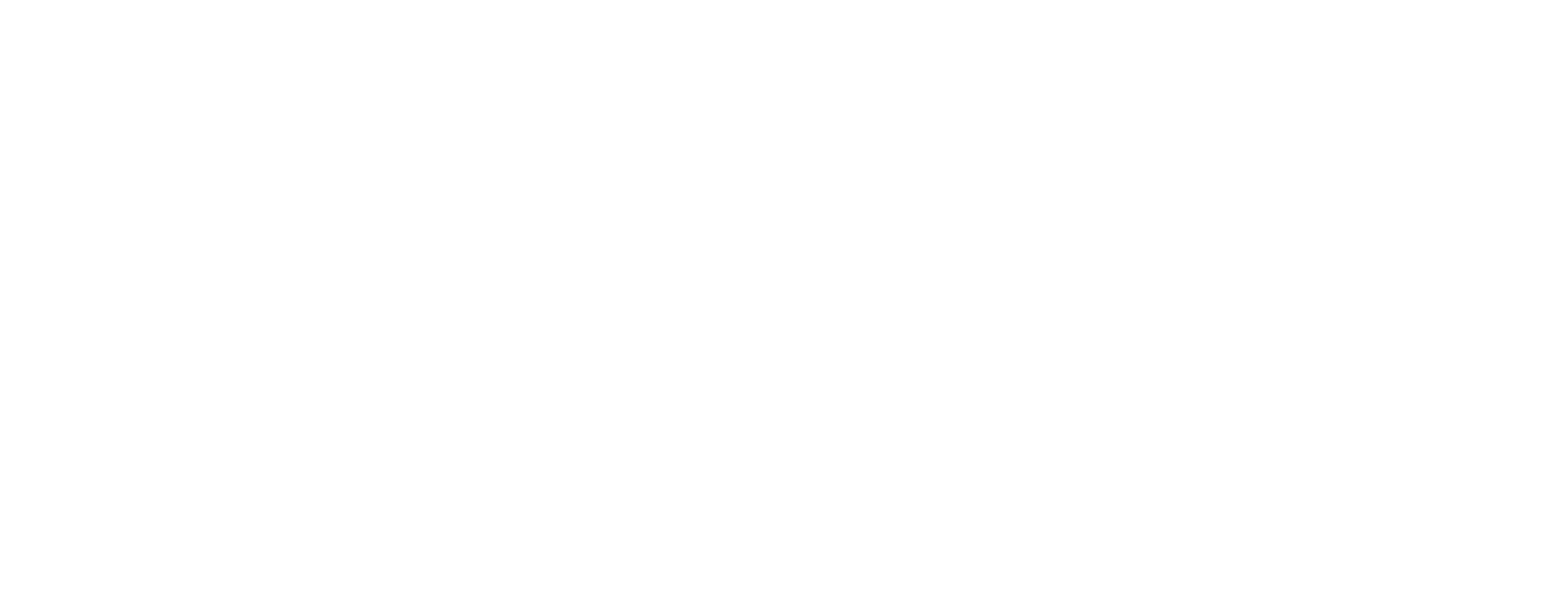 friendship_games_logo_all_white_horiz